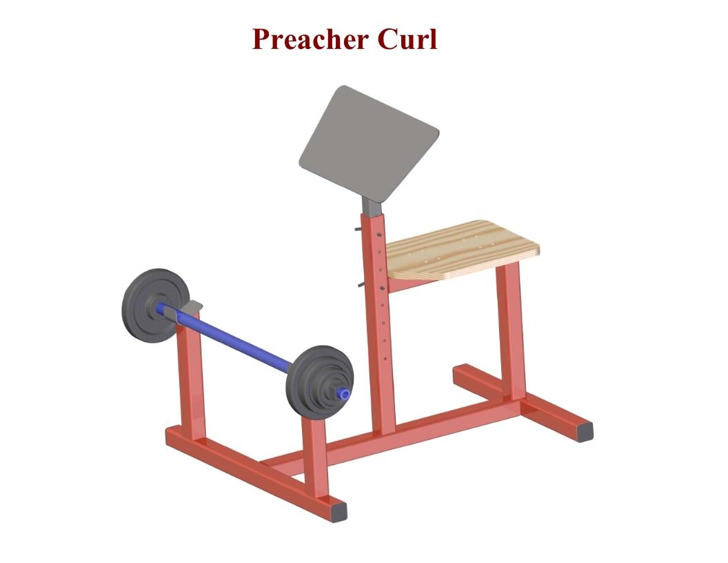 Preacher Curl