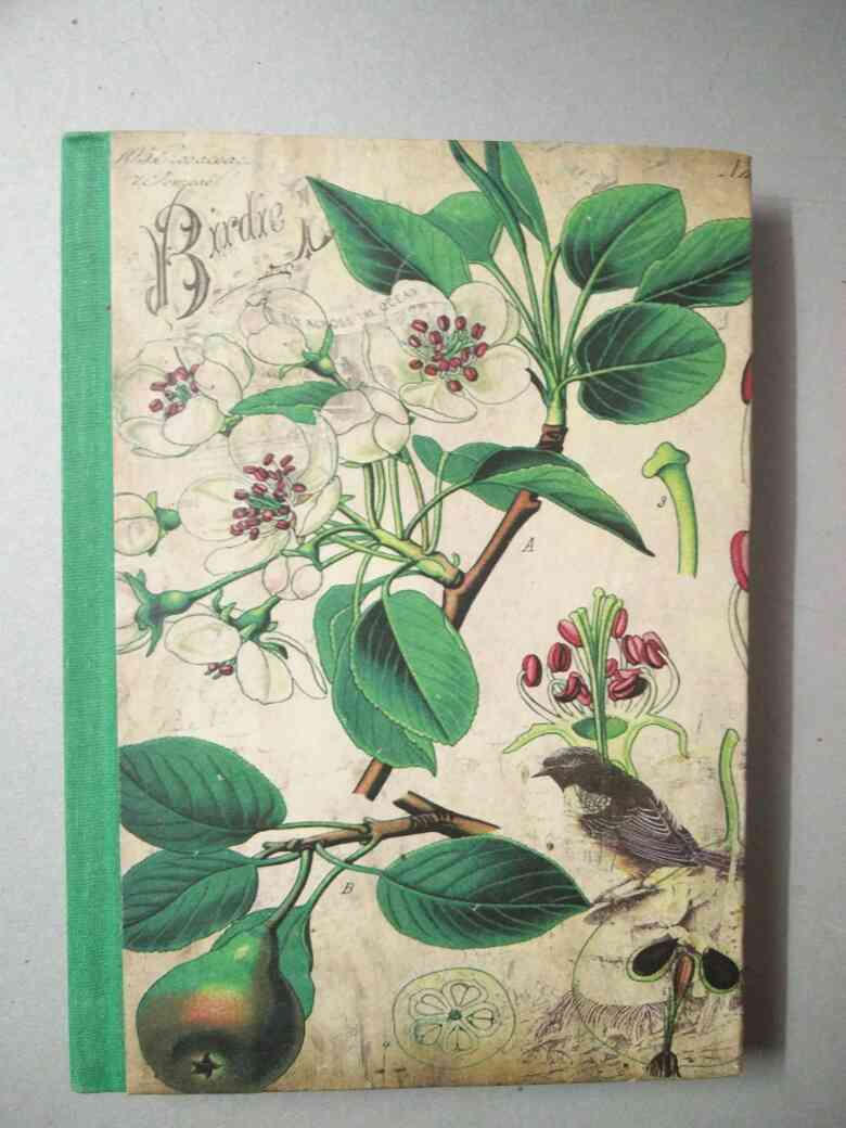 Handmade paper notebook with bird hand painted design size - 7