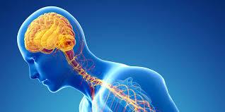 Parkinson Disease -
