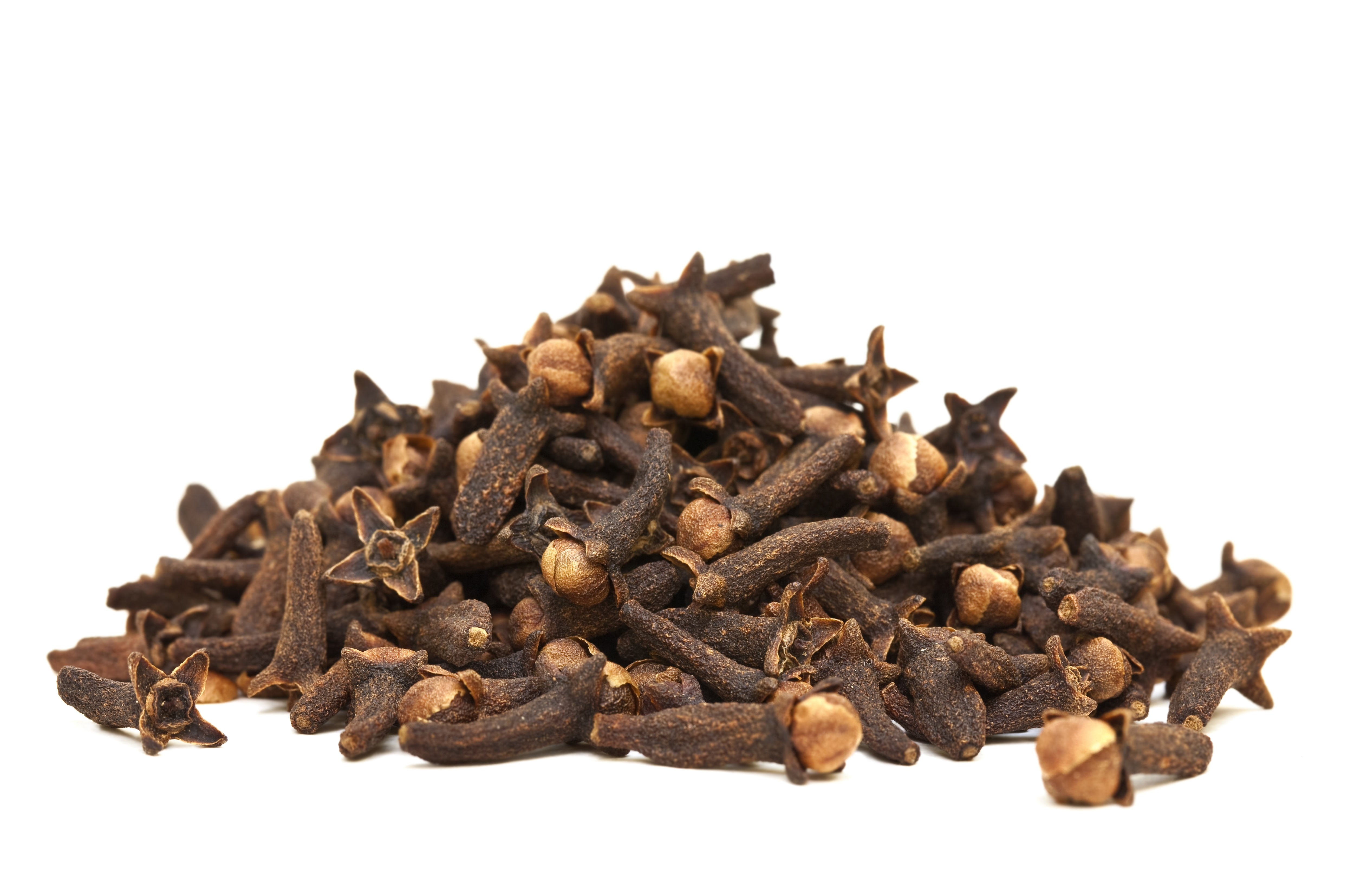 DESCRIPTION: Clove is originated from Indonesia & Malacca islands. It is with red brown color; Cloves are taken from tree & dried. It is widely distributed in Greeks, Roman & China. Clove is an evergreen tree that can grow up to 8-12 m tall, Clove require warm & humid climate.  It requires deep loam soil oil for growth.   Botanical Name: Syzygium aromaticum.   PROPERTIES: It is Colorless to Pale yellow with Strong spicy smell, Watery in viscosity   EXTRACTION: Clove oil can be extracted from the leaves, stem and bud by water distillation, containing the desired lower percentage of Eugenol.   CONSTITUENTS: The chemical constituents of clove oil are iron, calcium, potassium, phosphorous, vitamin A & C, hydrolic acid.   BLENDING: Clove oil blends with benzoin, lavender, ginger, sandalwood, basil and clary sage.   USES: Clove oil is used for cuts, burns, bruise & acne. It is used in Arthritic pain, rheumatism. Dentist give advice for the use of clove oil as it helps in toothache & mouth sore. It is good for digestive system as it is very effective against vomiting & diarrhea. Clove oil is used to treat against flatulence, bronchitis, asthma & tuberculosis. Clove oil can be used to reduce anxiety, mental exhaustion, fatigue & tension. Clove oil can be used as massage oil in cream and lotion. It is very effective against leg ulcer and skin sore. Clove oil acts as anti aging agent as it helps to remove wrinkles and facial rejuvenation. Due to its soothing effect and powerful aroma clove oil is used in making soap. Due to its powerful aroma and health benefits clove oil is used in food and flavoring. Clove oil added to split pea, bean soups and chili to give a good flavor