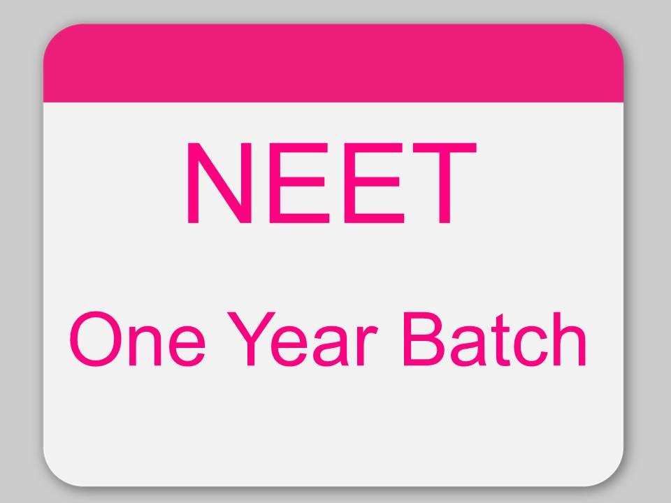 One Year NEET with 1