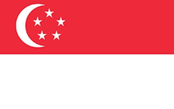 Singapore Student Vi