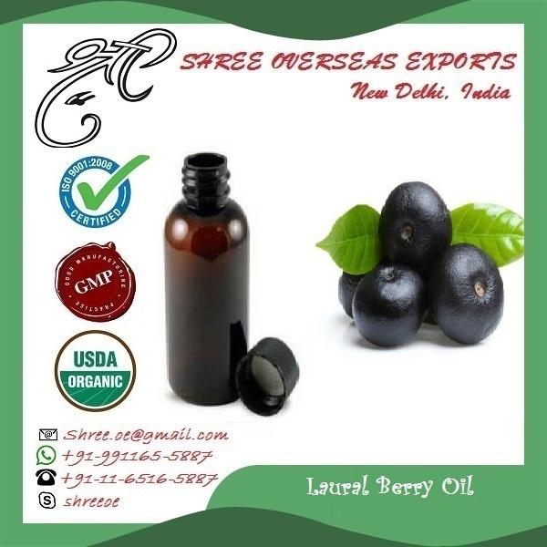 Laurel Berry Oil  (L