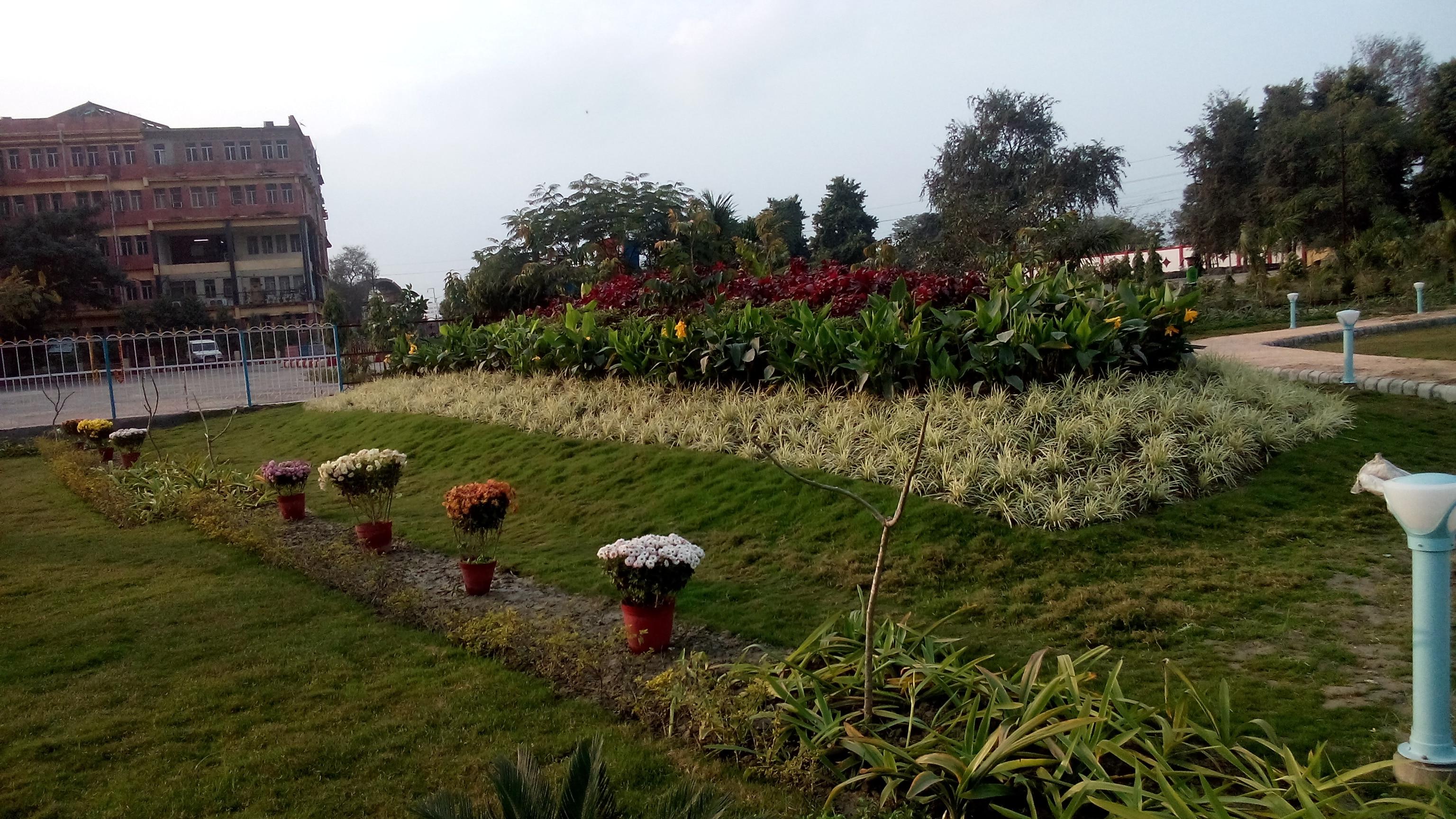 Landscape & Resident