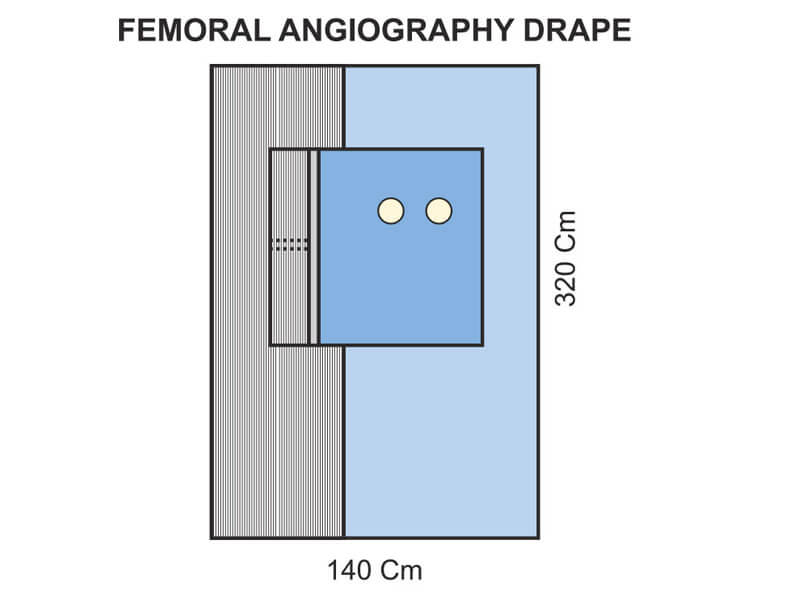 Femoral Angiography Pack III