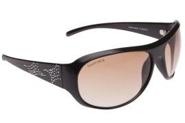 Fastrack P168BR3S Sunglasses