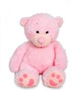 2 fit  Cb 2 Teddy Bear