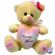 Kidnak Teddy Bear