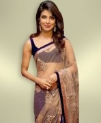 Chiffon With Velvet Border Saree