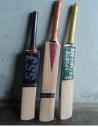 Swish SSC-002 Cricket Bat