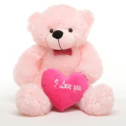 Love Teddy Bear With Heart