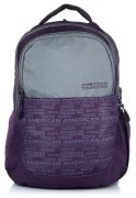 American Tourister Purple & Grey Backpack