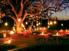 FORESTY WEDDINGS