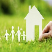 Real Estate Promoter and Developers