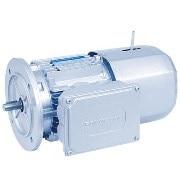 BN series IE1 AC motors