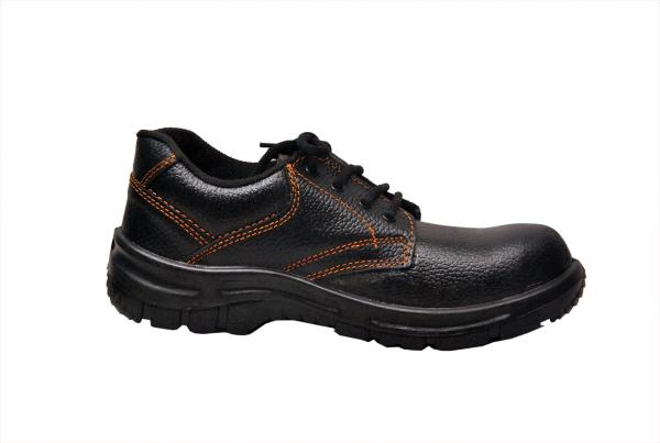 Ascott Safety Shoes