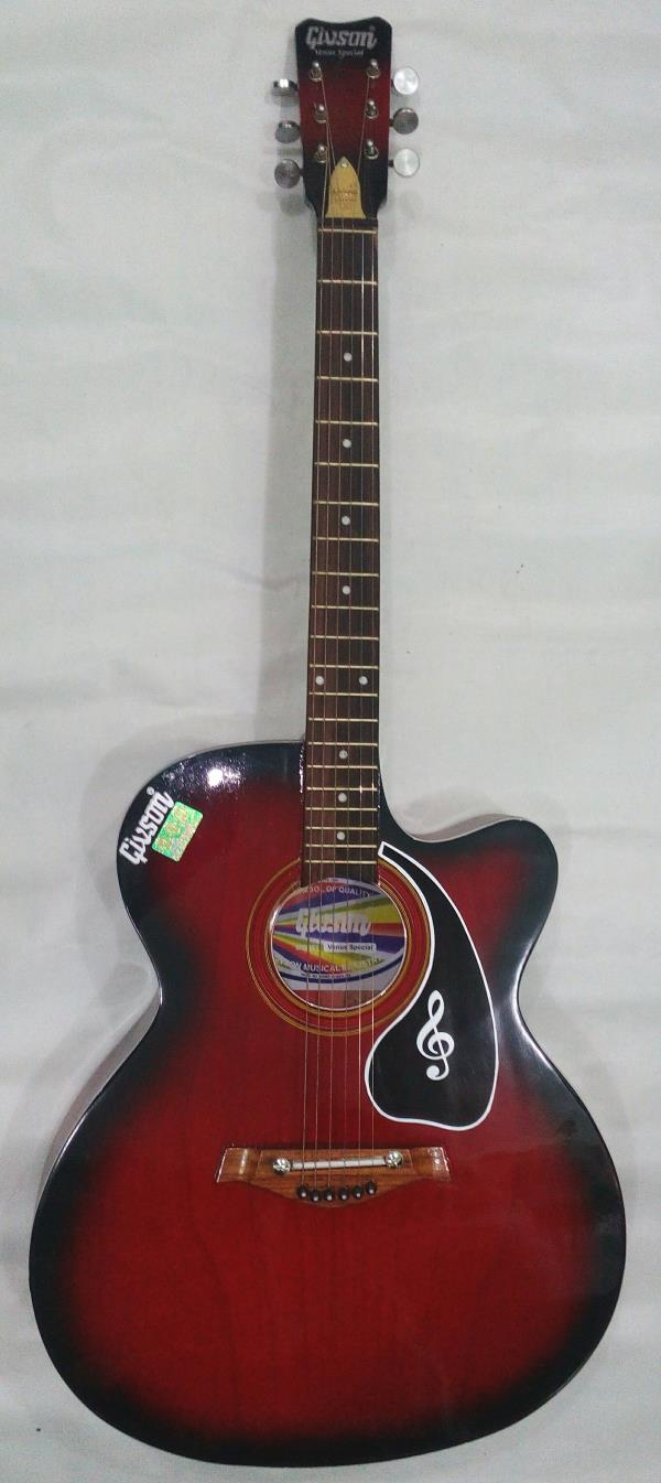 GIVSON GUITAR