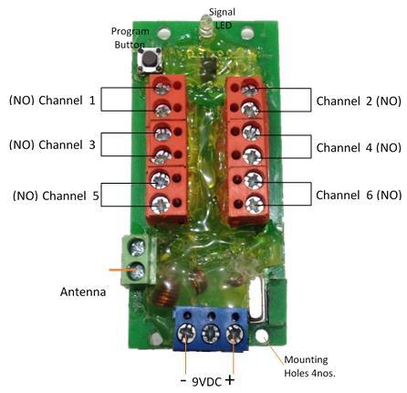 6Ch RF Transmitter - Term