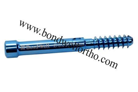 Lag Screw for Femoral Proximal Interlocking Nail Dia 8.0 mm