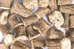 Un-roasted Chicory Roots (Hand Cut Roots)