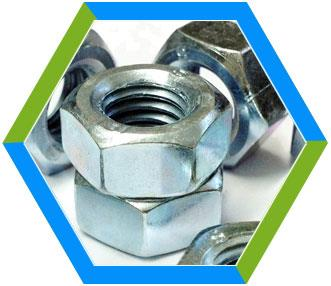 Manufacturer of high integrity Hex Nuts