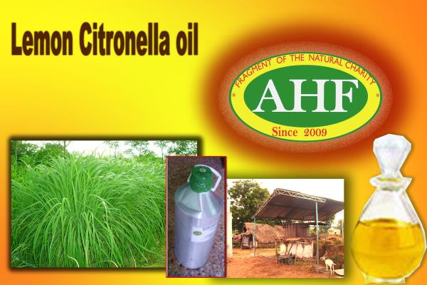 CITRONELLA OIL MANUFACTURER AND SUPPLIER IN INDIA ,FRANCE ,USA AND UK