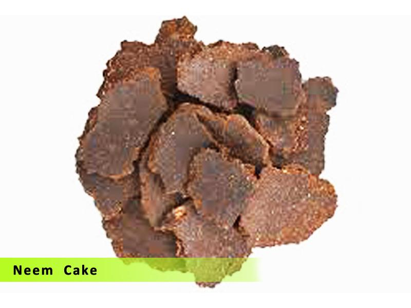 Neem cake is used as
