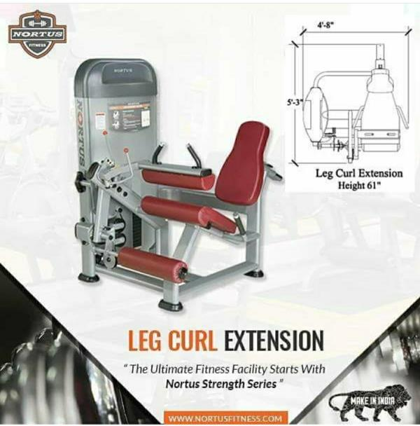 LEG CURL EXTENSION