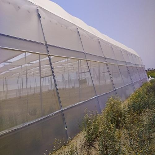 Our woven insect net is made out of high quality polyethylene HDPE and contains UV Inhibitors to protect them from the sun. Under normal conditions they should last up to 10 years. All of our insect netting is made to our own exact specifications. The nets have reinforced outside edges and a unique 4 layer double sewn join.  The sewn joins are machine stitched using an extremely strong industrial thread which is manufactured to order in the UK and supplied to all of our factories worldwide.  To make identification simple in the field all our nets have colour coded edges to identify the year and serial numbers to give traceability. The serial numbers also form part of our quality control process.  As the insect nets are made out of HDPE the production process has minimal impact on the environment. For 10 years they will help reduce the amount of pesticides used and at the end of their life they can be recycled.  The above demonstrates the lengths to which we go to ensure that our customers receive an industry leading insect net. Please see specifications for our full insect net range.