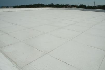 Roof Coatings ServicesExcell Coating We are counted amongst one of the noted organizations offering Elastomeric Roof Coating services that are widely used to enhance the life of the roofs. These services are offered by us with the assistance of adept professionals who have in-depth domain knowledge and rich experience. Our experts provide chemical treatment to the roofs to ensure resistance against fungus infection, molds, corrosion and harsh weather conditions. These Elastomeric Roof Coatings services are highly acclaimed by clients owing to their high reliability, cost effectiveness and delivery within the stipulated time frame.