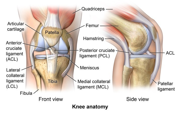 Knee arthroscopy is