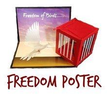Freedom  P