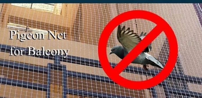 Net for pigeon deterrent